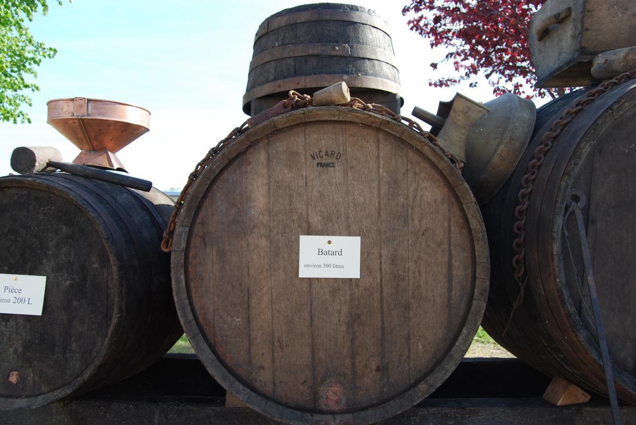 Les objets de la vigne-030